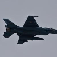 11/28 F-2