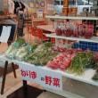 区役所内で新鮮な練馬野菜売ってます!