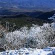雪山事始めは北八ヶ岳☆