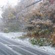 札幌初雪@2017