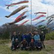 塩尻北熊井城跡に33匹の鯉のぼりが桜と北アルプス一望の高台で・・