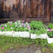 raising seedling beds