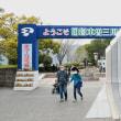 ●木曽三川公園のチューリップ祭