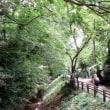 植木の町 安行周辺と見沼通船堀を歩く(埼玉・川口/さいたま)