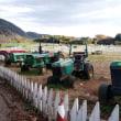 秋の服部牧場