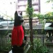 柳森神社を訪ねる2(東京の神社5-2)