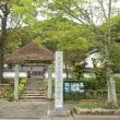 2018霧島ツツジと春のノムラカエデ・達身寺04/25