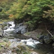 0930川井川〜色づき始める季節