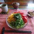 お昼ご飯は三輪太麺で冷麺風