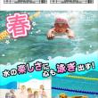 春休み短期水泳教室申込み状況【2019年2月11日現在】