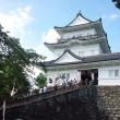 昨日小田原に鰻を食べお城を見てまいりました