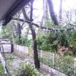 台風21号     Le Typhon