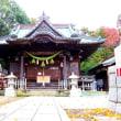 谷口集落の鎮守「鹿島神社」の初冬景色!!