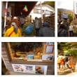 阿夫利神社の紅葉と大山豆腐(H29.11.18)