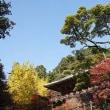 寒さが… 11月16日(木)晴れ時々曇り