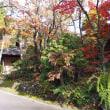 山のホテル 夢想園さんの紅葉(4) 2017