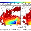 今年のウナギは高そう!シラスウナギが不漁、「逆風」が吹いて海流に影響しているのかもしれない?