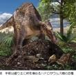 古代の北極圏・南極圏に恐竜がいた?卵をかえすために「地熱」や「発酵熱」を使う方法があったらしい
