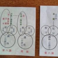 八識の構造(本質と影像)図式
