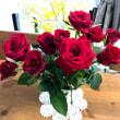赤い薔薇♪