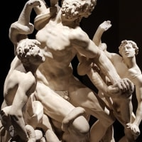 「ミケランジェロと理想の身体」