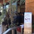 祝★1周年 Cafe'de SATO  さん