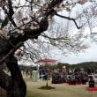 茨城県水戸市の偕楽園2018年の春・・梅は満開