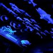 7/31-8/4 夏休みの九州旅行 その7「門司港レトロ観光列車 潮風号」