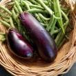 家庭菜園からの収穫の追加