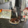朝はJR茨木駅、昼はお話ししながら「一人でも」/京都大山崎町長選挙