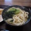 新店で半夏生♪「こがね製麺所/倉敷天城店」