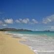 To Hawaii ハワイへ