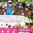 今年のチョコレートは♡♡