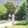 上野公園スナップ