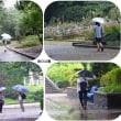 雨の中公園をウォーキングに。