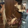 青野文昭展@武蔵野市立吉祥寺美術館〜家具の音楽:サティ/ビル・ネルソン/スロッビング・グリッスル