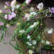 「花綵」春の競演