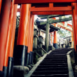 健康と体力と-京都市伏見区:伏見稲荷大社