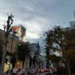 昭島の鳥の大群。交通事故、整体、産後調整なら、女性スタッフのいる「立川市のヒロ整骨院」