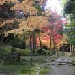 ブロンプトンで湖東三山 西明寺の紅葉ポタリング・・・