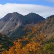 北八ヶ岳紅葉狩り登山を楽しむ。