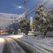 すごい雪でした