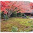 関西文化の日は…(^^♪紅葉の綺麗な万博記念公園の「日本庭園茶室」