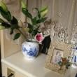 シャンソン歌手リリ・レイLILI LEY  フランス語 シャンソン 色々 あるある 花達も色々あるある
