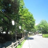 8/17(金)のPACニュース~追分&軽井沢周辺の情報