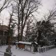 真冬になったあ!
