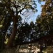 渡ケ島諏訪神社