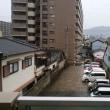 1月8日(月)雨。