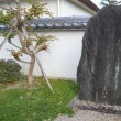寺院京田辺0553 寿宝寺