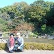 囲碁と皇居東御苑ニの丸庭園(カナダ帰り)7日目
